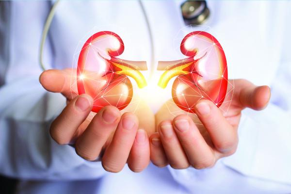 Everything you need to know about Kidney Transplant