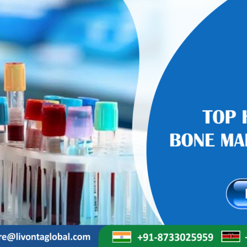Top Hospitals For Bone Marrow Transplant in India