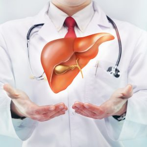 Time for Liver Donor Recovery After Liver Transplant