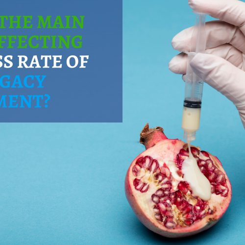 What are the main factors affecting the success rate of surrogacy treatment?